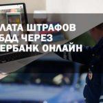Как платить штрафы ГИБДД со скидкой 50% через Сбербанк Онлайн